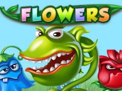 Sarah Wins Her Favorite Slot Machine – Flowers
